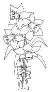 daffodils005 - Copy