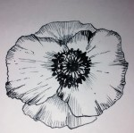 poppy remembrance clipart