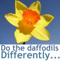 daffodilsdifferentl
